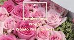 Projeto Pirâmide Rosa – a simplicidade de um grandioso projeto